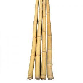 Bamboo Schach Pole