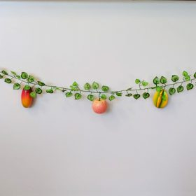 Fruit Vine